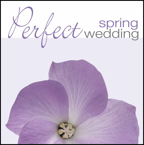 PERFECT SPRING WEDDING (CD)