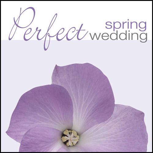 PERFECT SPRING WEDDING (CD)